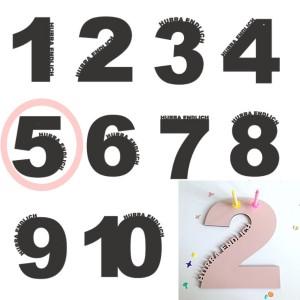 Rasmussons Geburtstagszahl 5 in rosa (Übersicht) - Holzspielzeug Profi