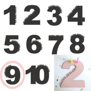 Rasmussons Geburtstagszahl 9 in rosa (Übersicht) - Holzspielzeug Profi