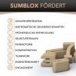 SumBlox Holzbausteine: fördert - Holzspielzeug Profi